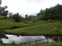 138 jardin Zen  Bambouseraie d'Anduze 15 09 15 [800x600]