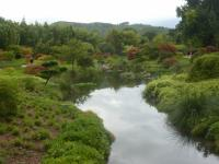 140 jardin Zen  Bambouseraie d'Anduze 15 09 15 [800x600]